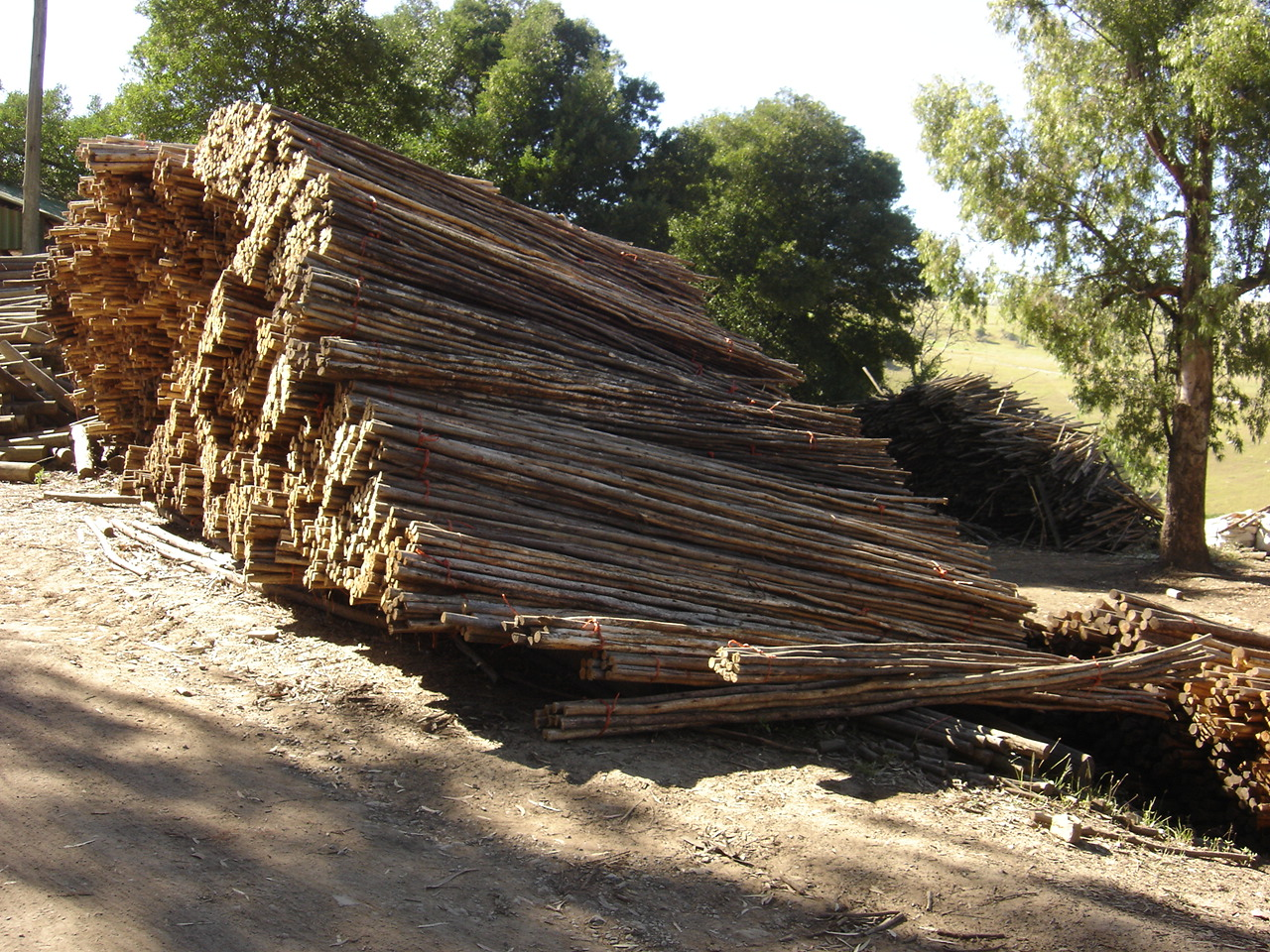 CCA Treated Timber in the Eastern Cape
